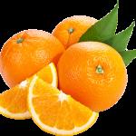 orange_PNG791